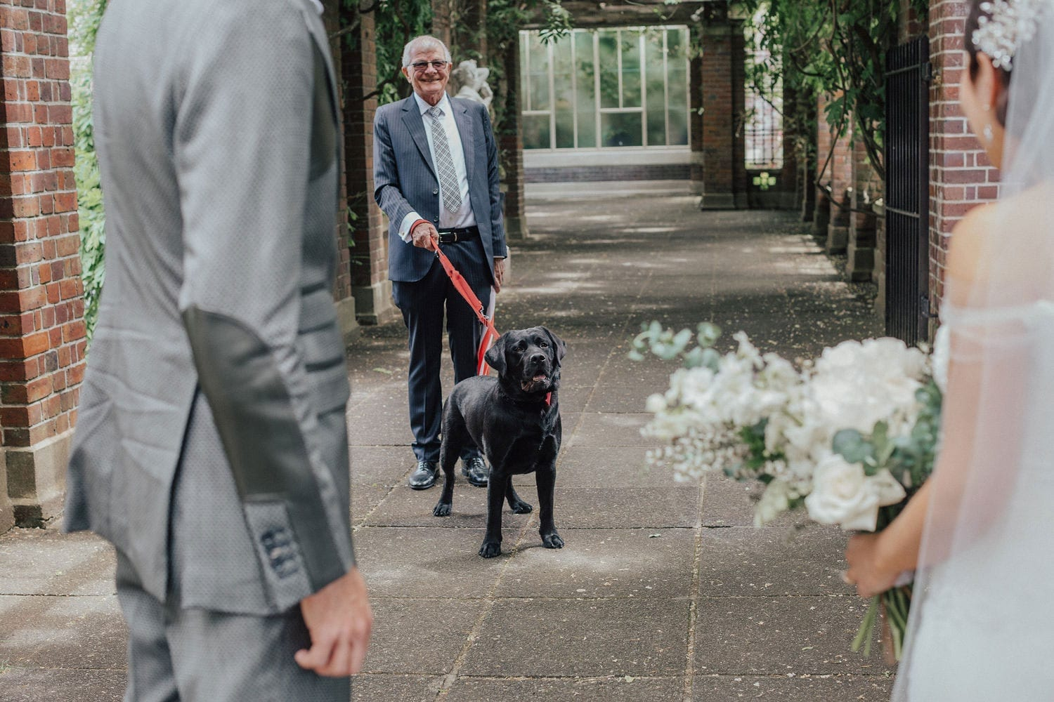 Vinka Design Features Real Weddings - bride wearing custom made lace wedding gown. Family Dog at ceremony
